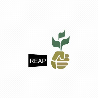 REAP – Rice Exporters Association of Pakistan